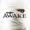 Couverture de l'album Awake (Deluxe Version)