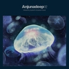 Cover of the album Anjunadeep 02 (Mixed by Jaytech & James Grant)