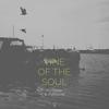 Couverture du titre Vine of the Soul (Powel Remix)
