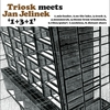 Couverture de l'album 1+3+1 (Triosk Meets Jan Jelinek)