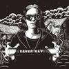 Couverture de l'album Fever Ray