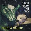 Couverture du titre Back from the Sky