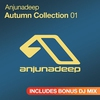 Cover of the album Anjunadeep Autumn Collection 01