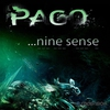Couverture de l'album Pago - Nine Sense