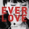 Couverture de l'album Everlove