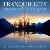 Cover of the album Tranquillity - Voices of Deep Calm