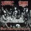 Couverture de l'album Feast of Sacrilegious Impurity