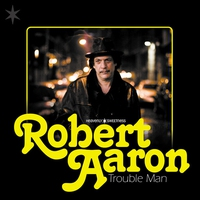 Cover of the track Trouble Man