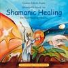 Couverture de l'album Shamanic Healing: For Your Healing Process