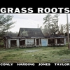 Cover of the album Grass Roots (feat. Chad Taylor, Darius Jones, Alex Harding & Sean Conly)
