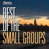 Couverture de l'album Small Group