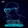 Cover of the album Le monde est stone