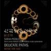 Cover of the album Delicate Paths: Music for Sho