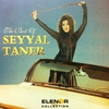 Cover of the album The Best of Seyyal Taner