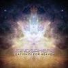 Couverture de l'album Patience for Heaven