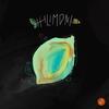 Couverture de l'album Hilimoni