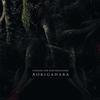 Couverture de l'album Aokigahara
