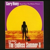 Couverture du titre Theme From The Endless Summer