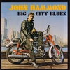 Cover of the album Big City Blues