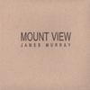 Couverture de l'album Mount View