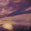 Couverture de l'album The Great White Emptiness