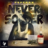 Cover of the track Never Sober