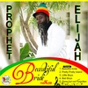 Cover of the track Jah Reigns