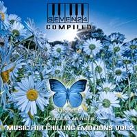 Couverture du titre Music For Chilling Emotions, Vol 2
