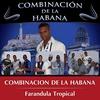 Couverture de l'album Farandula Tropical