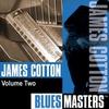 Couverture de l'album Blues Masters Vol. 2