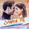 Couverture de l'album Sanam Re (Original Motion Picture Soundtrack)