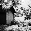 Couverture de l'album Shelter