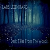 Couverture de l'album Dark Tales From the Woods