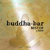 Couverture de l'album Buddha-Bar Best Of