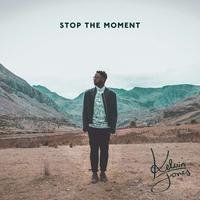 Couverture du titre Stop the Moment (Deluxe)