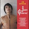 Couverture de l'album 15 Exitos de Juan Gabriel
