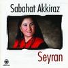 Couverture de l'album Seyran