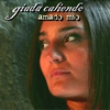 Cover of the track Amado mio