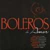 Couverture de l'album 100 boleros de amor