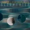 Cover of the album Sleepthief (feat. Liam Noble & Tom Rainey)
