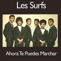 Cover of the track Ahora Te Puedes Marchar - Single
