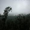 Couverture de l'album After Dark