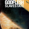 Cover of the album Slavestate