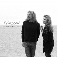 Cover of the track Raising Sand