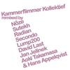 Cover of the album Kammerflimmer Kollektief Remixed
