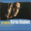 Couverture de l'album The Collected Marion Meadows