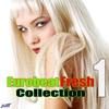 Couverture de l'album EurobeatFresh Collection 1