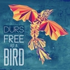 Cover of the album Free As a Bird - Single