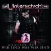 Cover of the album Monster Akt II: Wir sind was wir sind
