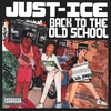 Couverture de l'album Back to the Old School